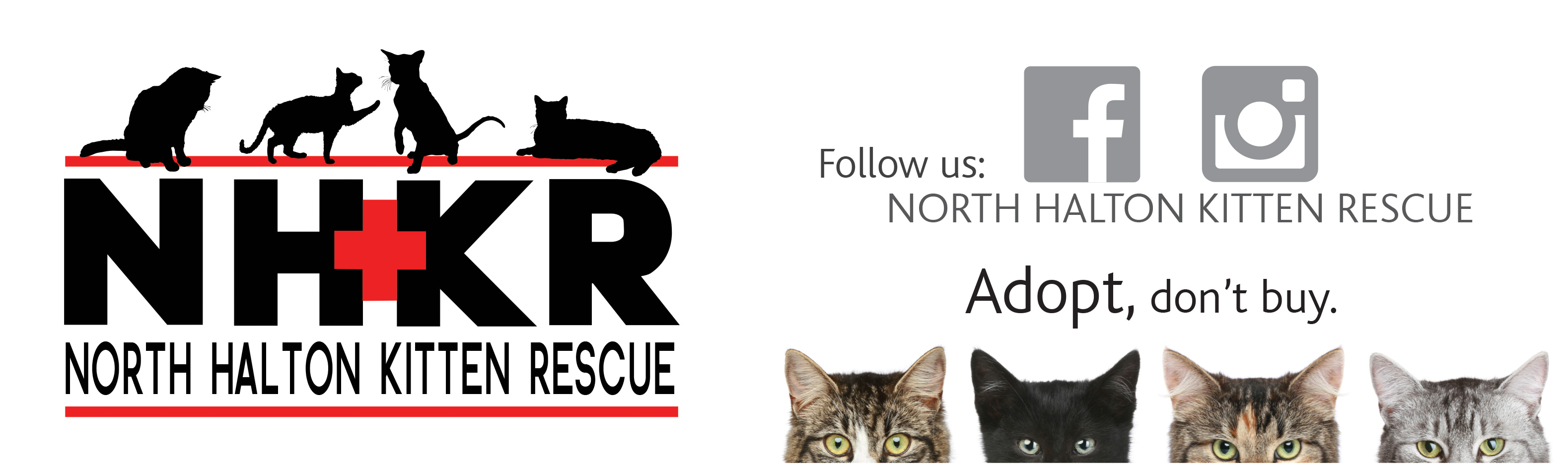 North Halton Kitten Rescue